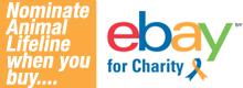 ebaycharity1