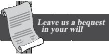 will-banner1