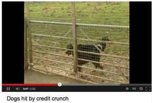 video-creditcrunch